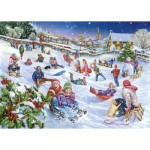 The-House-of-Puzzles-2933 Sledging