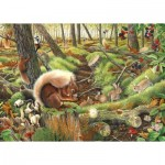 The-House-of-Puzzles-3688 Save Our Squirrels