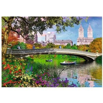 Trefl-10467 Central Park, New York