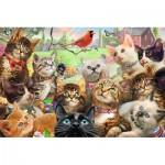 Trefl-13241 Pièces XXL - Kittens