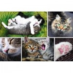 Trefl-26145 Collage - Chats