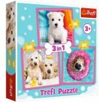 Trefl-34845 3 Puzzles - Chiens