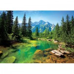 Trefl-37117 Pologne : Rivière des Tatras