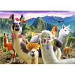 Trefl-37383 Lamas dans les Montagnes