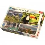 Trefl-90676 4 Puzzles - Amérique du Sud