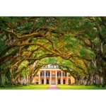 Castorland-104383 Oak Alley Plantation