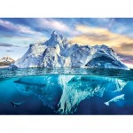 Eurographics-6000-5539 Save our Panet Collection - Arctique