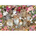 Jumbo-11246 Floral Cats