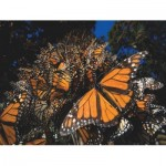 New-York-Puzzle-NG1987 Pièces XXL - Monarch Butterflies