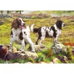 Otter-House-Puzzle-75804 Spaniel on Moor