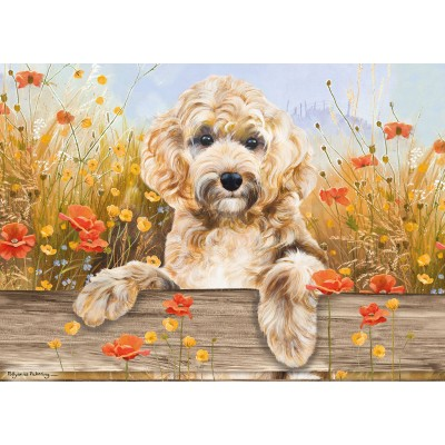 Otter-House-Puzzle-75834 Cockapoo View