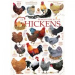 Cobble-Hill-80120 Chicken Quotes