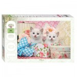 Step-Puzzle-79100 Chatons